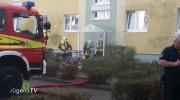Erneute Brände in Bergen Süd