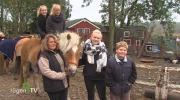 Binzer Pferdehof