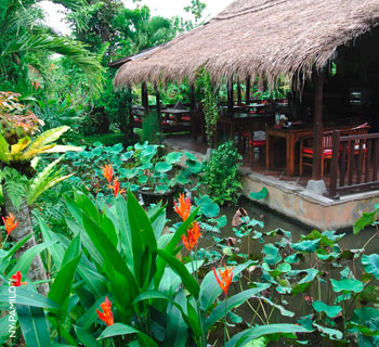 Eat, pray, love & enjoy Bali - <br/>wo die Götter Yoga treiben