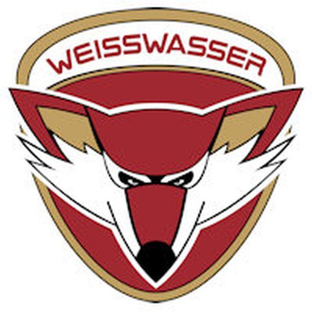 Füchse Sieg-Image