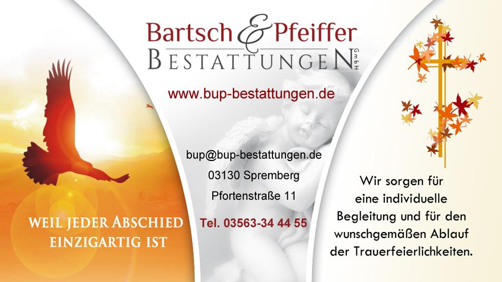 BartschPfeiffer13Q