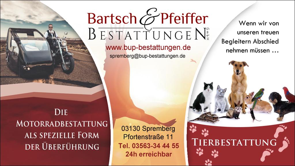 BartschPfeiffer12Q