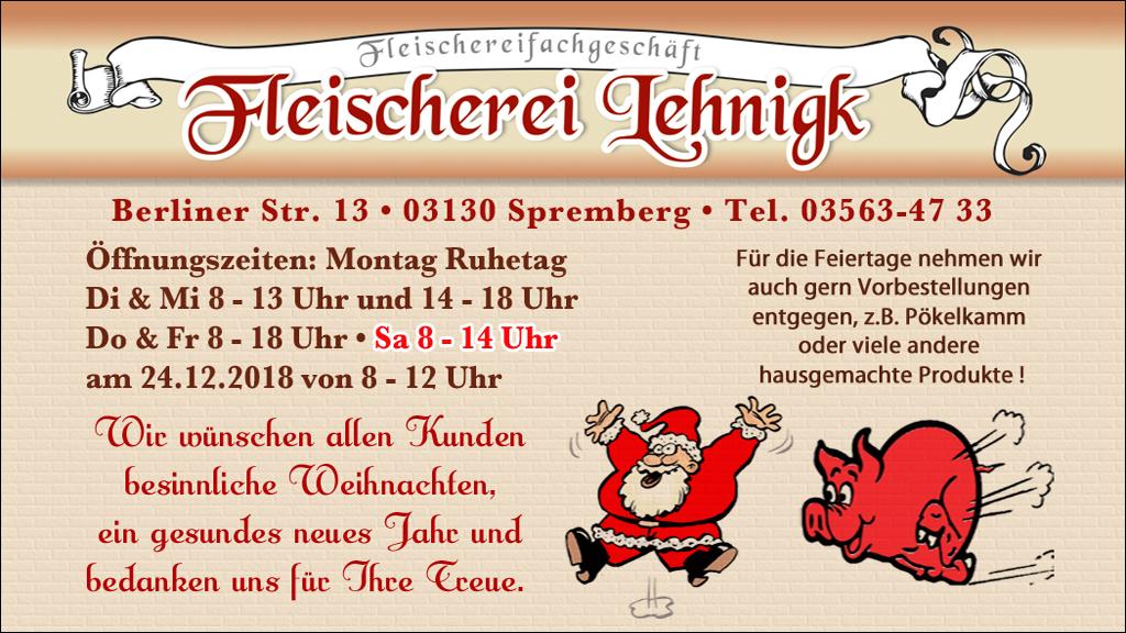 LehnigkFleischerW18Q