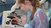 Studienangebot in Deutschland ist riesig