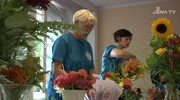 Gemeinnütziges Engagement: Am 10. Freiwilligentag beteiligten sich über 320 Helfer