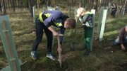 Baumpflanzung: Auf dem Cospoth soll ein Bürgerwald entstehen