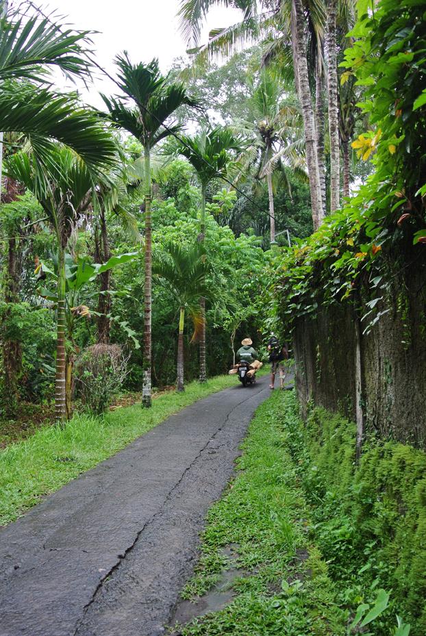 Bali_17