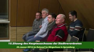 15.Sitzung des Hauptausschusses der SVV Spremberg