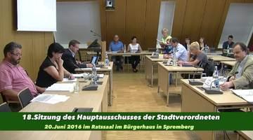 18. Sitzung des Hauptausschusses am 20. Juni 2016