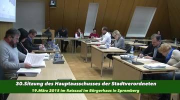 30.Hauptausschuss der SVV Spremberg