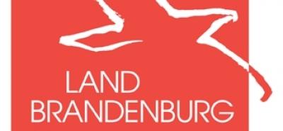 Brandenburg plant Moped-Führerschein mit 15-Image