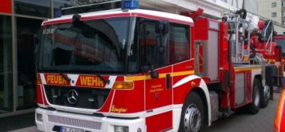 Polizeimeldungen: Mülltonnen in Brand; PKW gestohlen-Image