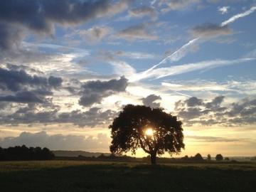 Mo-Fr, 06-10 Uhr: Die Frühstarter-Image