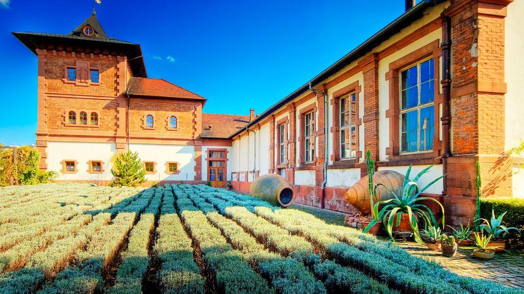Gartenschau ab dem 30. März geöffnet-Image